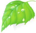 Verde 2000 Giardini SRL