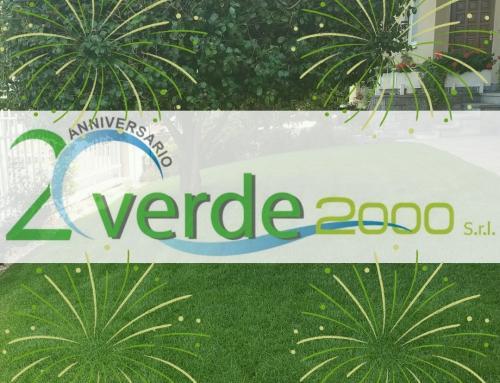 Verde 2000 S.r.l. festeggia 20 anni di attività