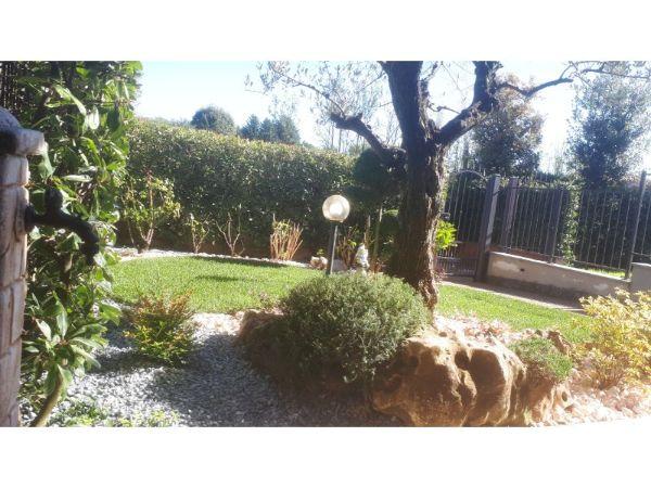 nuovo giardino aiuole e prato a rotoli copia
